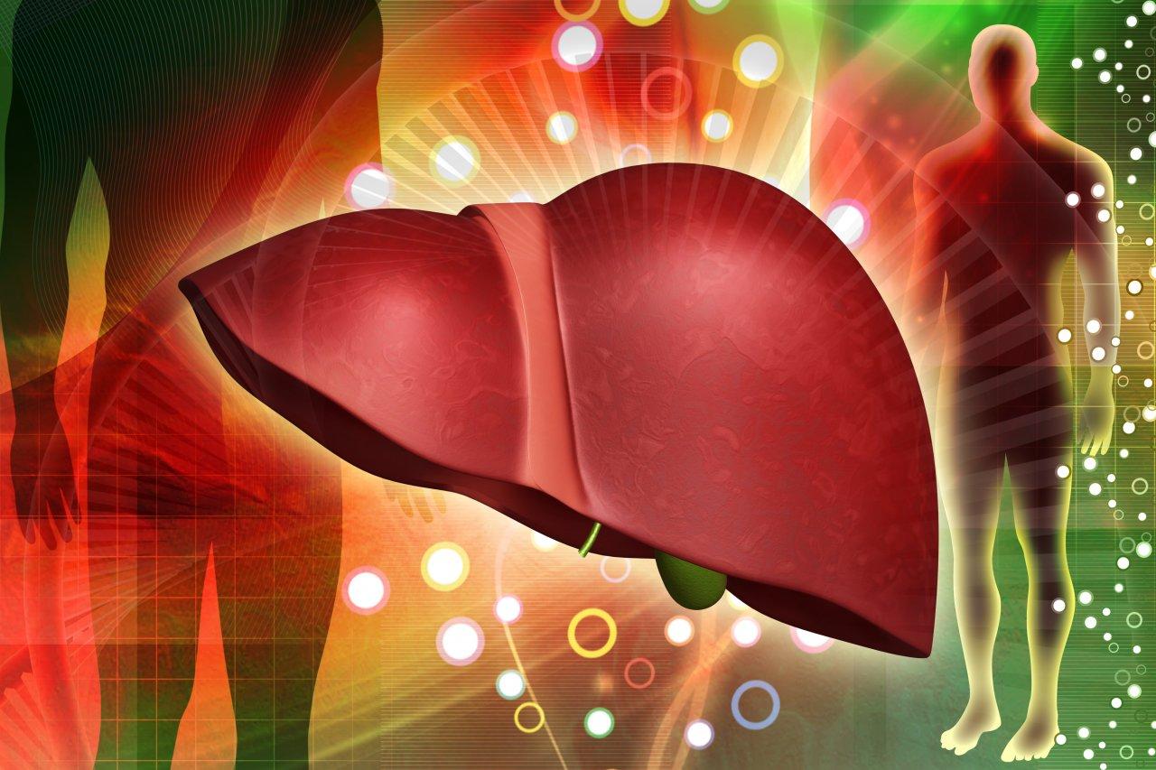 Картинки по запросу жиры в печени превращаются в кетоновые тела