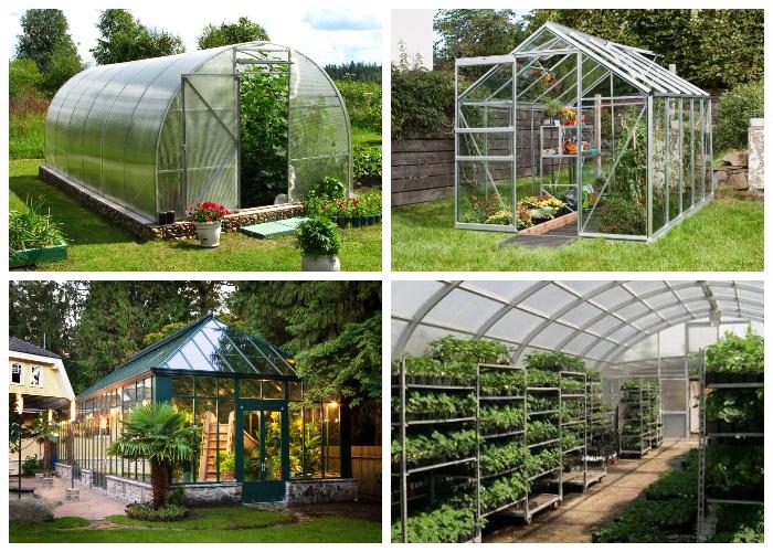 Теплицы на приусадебном участке помогут вырастить высокий урожай.