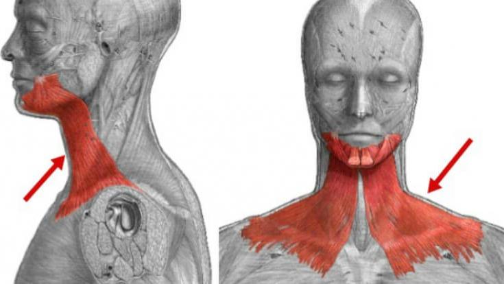 Упражнение, которое подтянет обвисшую кожу лица