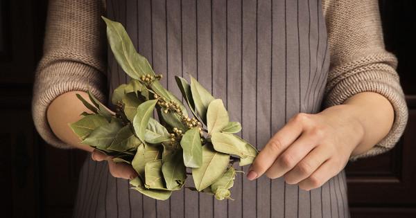 Зачем яжгулавровый лист каждый день